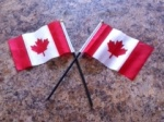 Canadian, flag, celebration